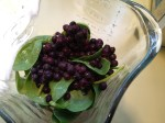 Spinach & Blueberries