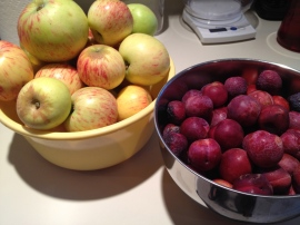 Apples & Plums